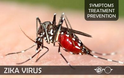 Zika Virus – Symptoms, Treatment & Prevention